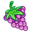 grape_icon2